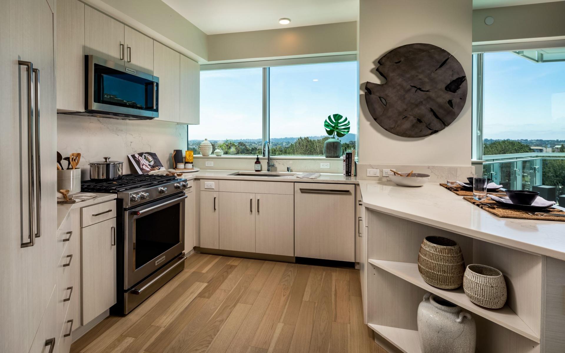 Palisade penthouse kitchen